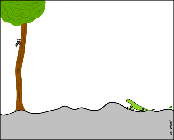 7.1-lizard-pain-1