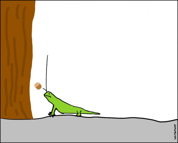 7.3-lizard-pain-3