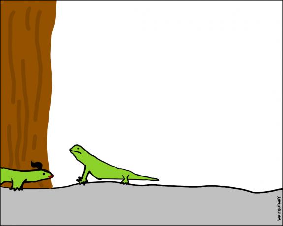 8.1-lizard-horny-1