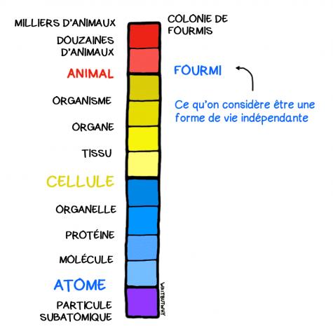Diapositive6V2 (1)